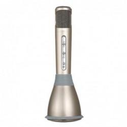 Microphone Sans Fil Portable Bluetooth Orateur