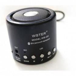 Mini Enceinte Bluetooth